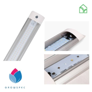 Slimspec grow lamps, grow LED, led plant light, plant illumination, flower light, flower lamp, germination lamp, herb lamp, strawberry lamp, grow LED, led grow light