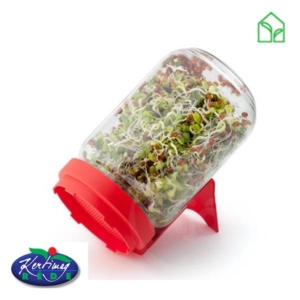 sprout seeds, germination pot, seed pot, glass jar, seed jar, germination jar