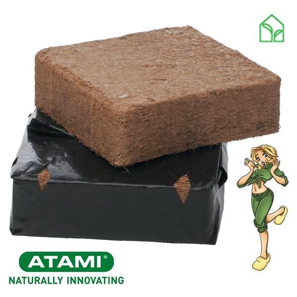 atami bounce, coco brick, kókusztégla